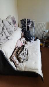Nathalie's Sofa